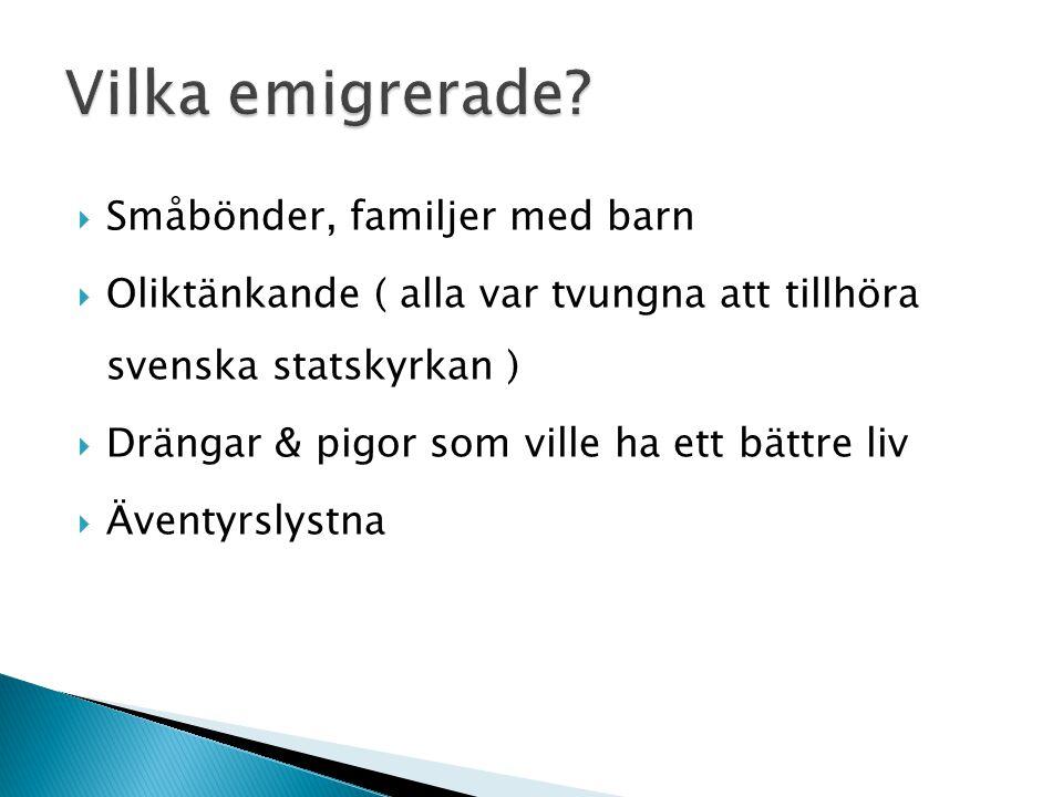  Småbönder, familjer med barn  Oliktänkande ( alla var tvungna att tillhöra svenska statskyrkan )  Drängar & pigor som ville ha ett bättre liv  Äv