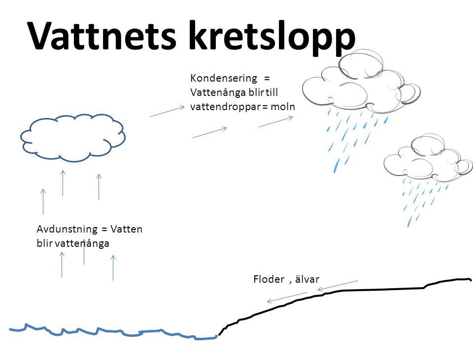 Vattnets kretslopp Avdunstning = Vatten blir vattenånga Floder, älvar Kondensering = Vattenånga blir till vattendroppar = moln