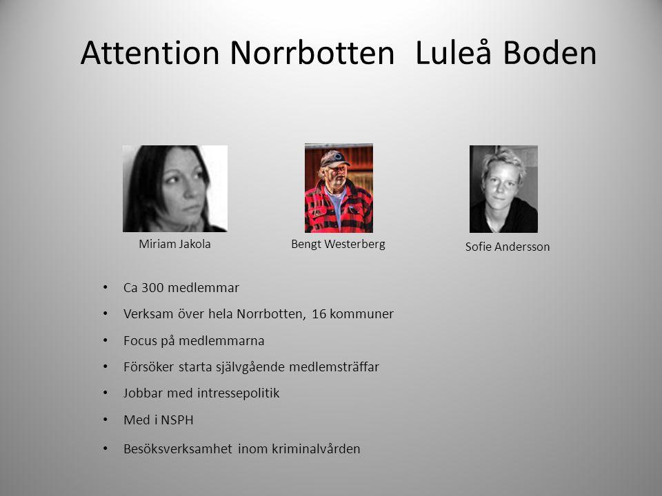 Attention Norrbotten Luleå Boden • Ca 300 medlemmar • Verksam över hela Norrbotten, 16 kommuner • Focus på medlemmarna • Försöker starta självgående m