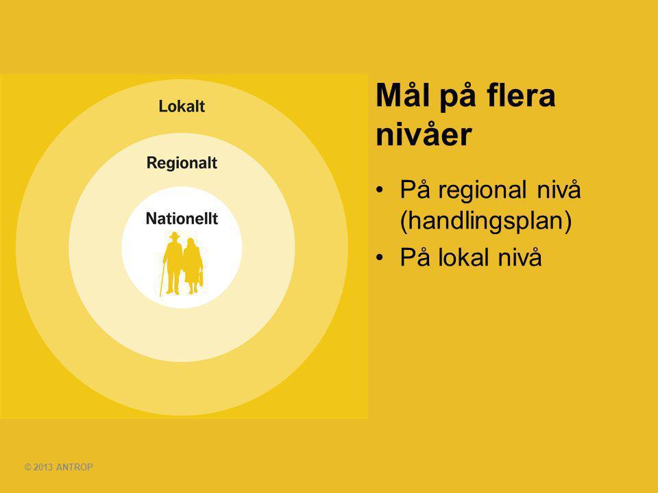 © 2013 ANTROP Mål på flera nivåer •På regional nivå (handlingsplan) •På lokal nivå