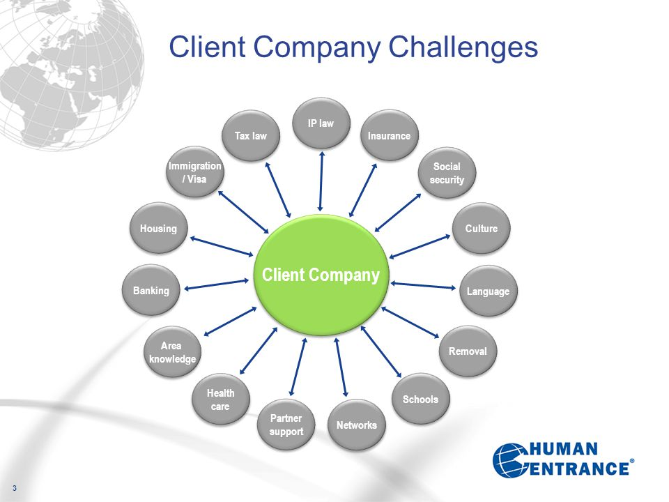 3 Client Company Challenges IP law Insurance Social security Culture Language Removal Schools Networks Partner support Partner support Health care Are