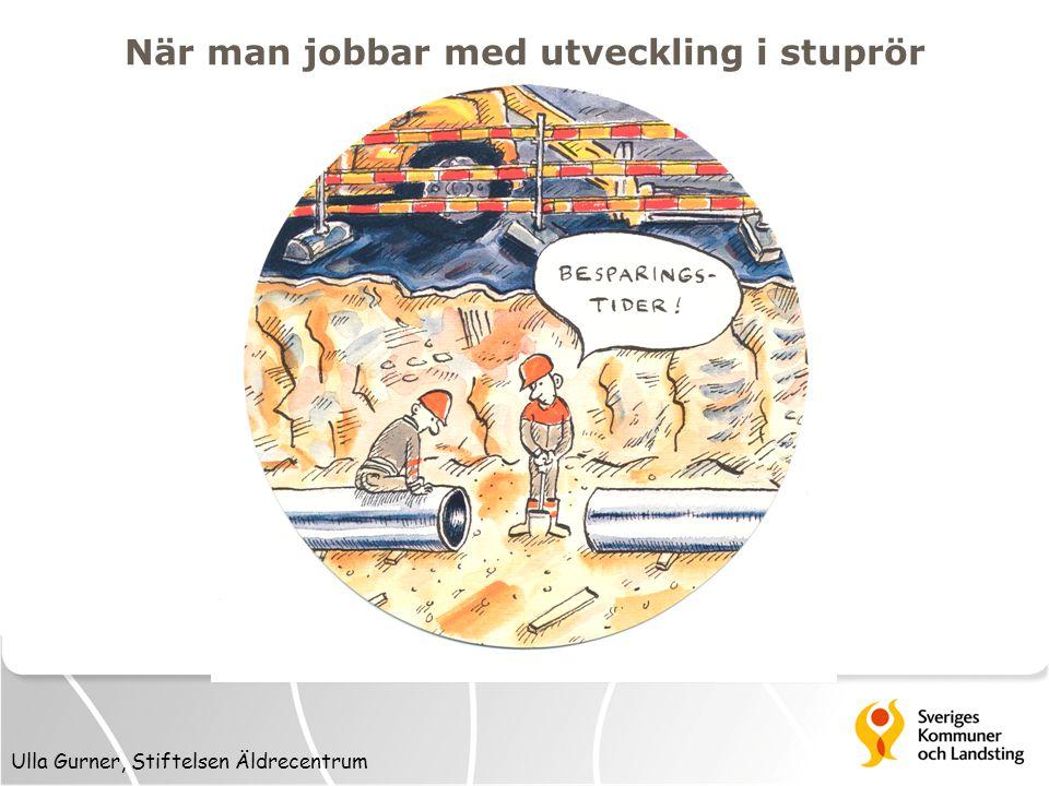 Ulla Gurner, Stiftelsen Äldrecentrum När man jobbar med utveckling i stuprör