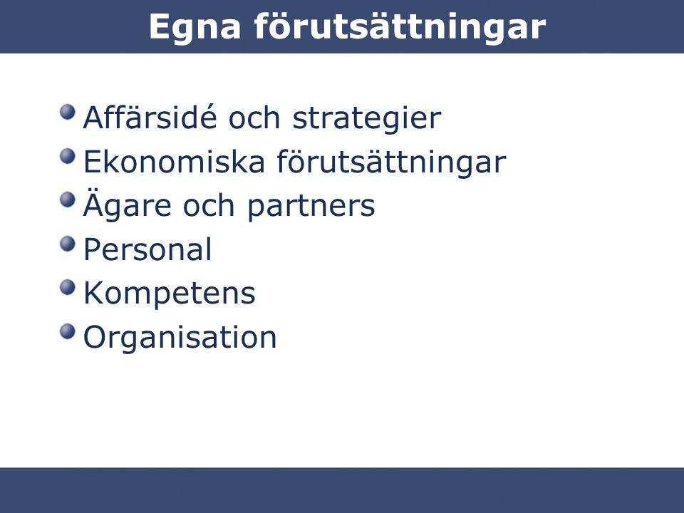 Egna förutsättningar Affärsidé och strategier Ekonomiska förutsättningar Ägare och partners Personal Kompetens Organisation