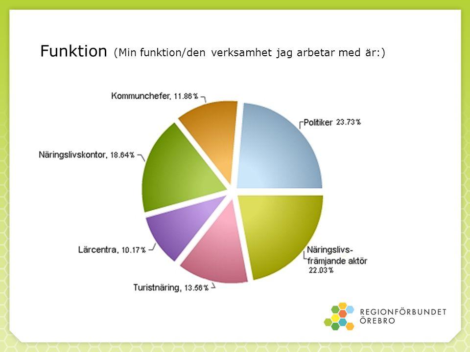 Syfte att kartlägga och jämföra förhållandena i regionen att undersöka förutsättningarna och intresset för att skapa ett effektivare företagsfrämjande system i Örebroregionen Områdena som enkäten tog upp var företag – kompetens och besöksnäringen - platsmarknadsföring nu till resultatet av enkäten…..