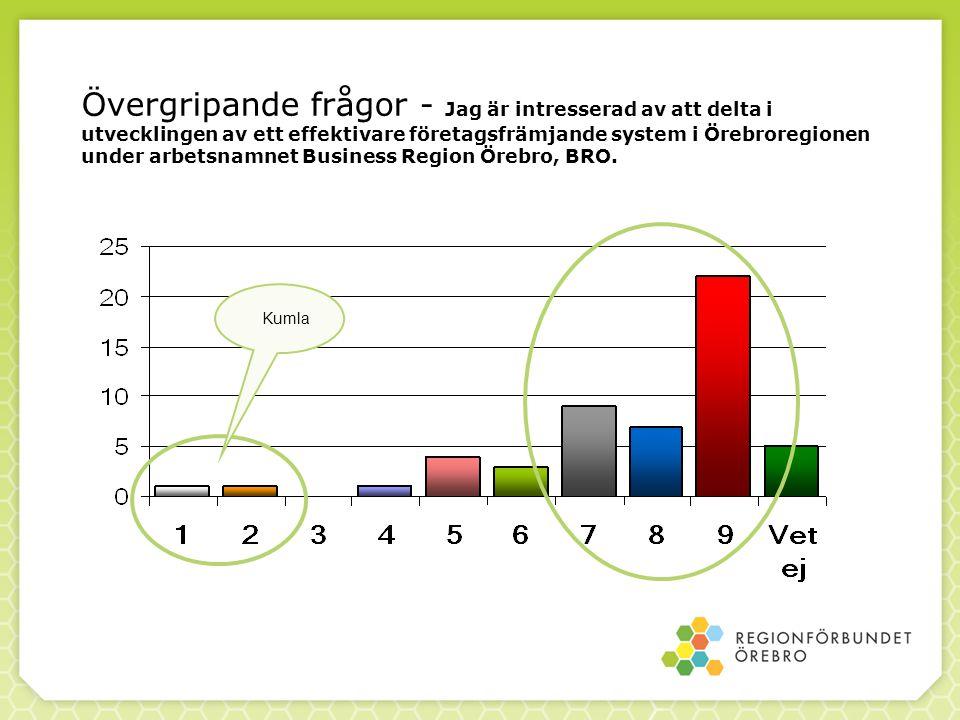 Övergripande frågor - Jag är intresserad av att delta i utvecklingen av ett effektivare företagsfrämjande system i Örebroregionen under arbetsnamnet B