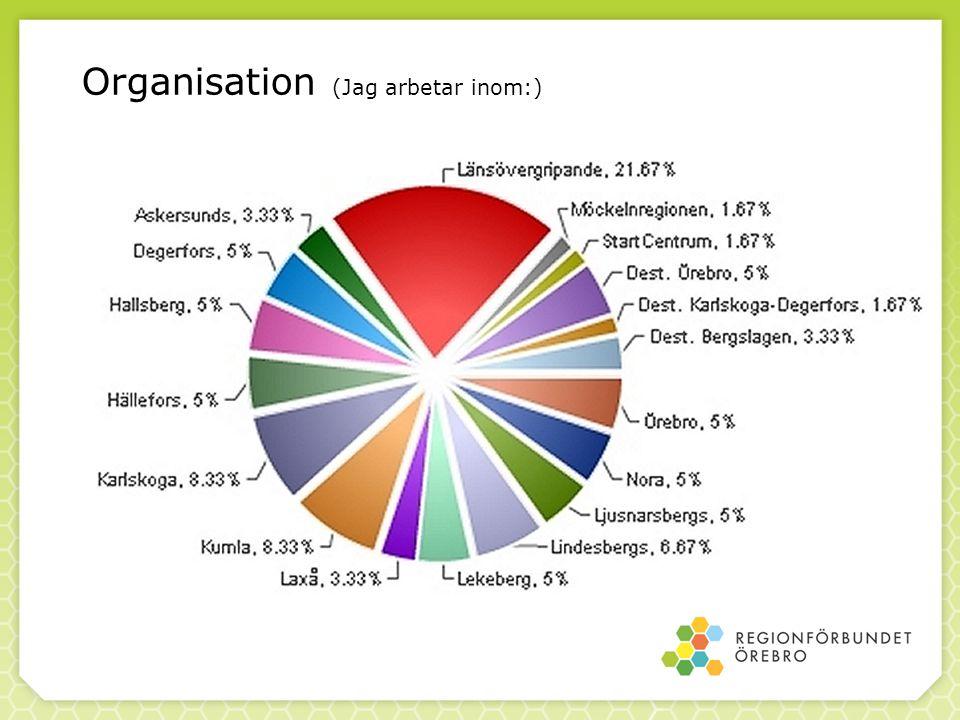 Marknadsföring - Fler satsningar för att göra Örebroregionen attraktivare att bo i/studera i/pendla till behövs.
