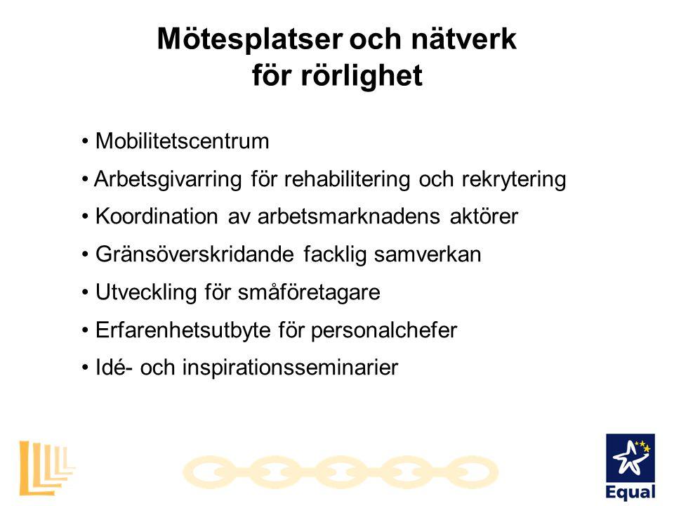 Mötesplatser och nätverk för rörlighet • Mobilitetscentrum • Arbetsgivarring för rehabilitering och rekrytering • Koordination av arbetsmarknadens akt