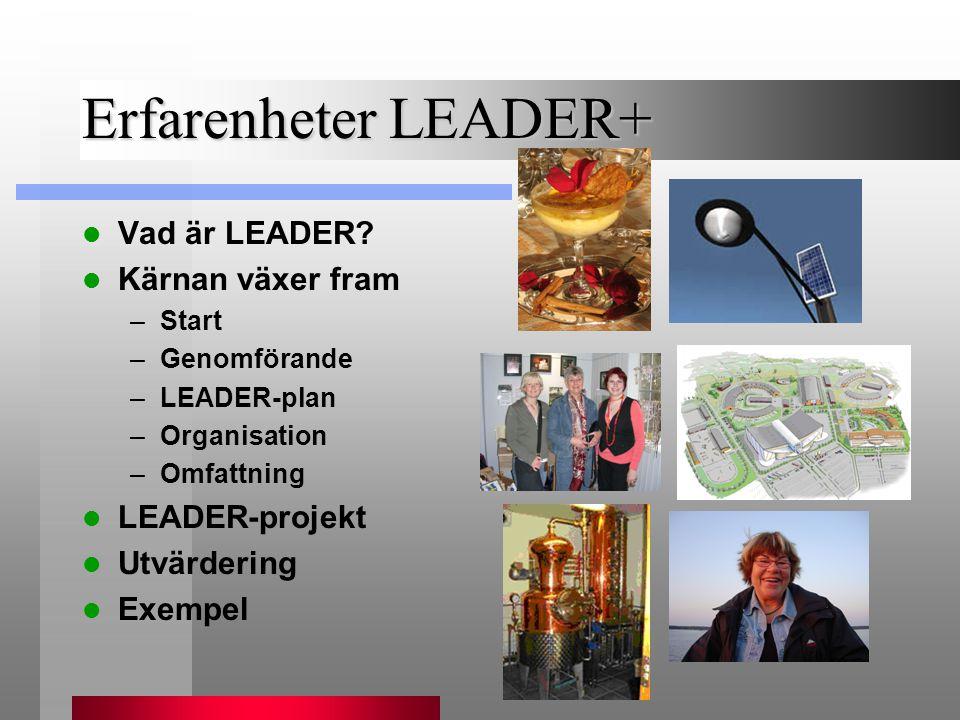 Erfarenheter LEADER+  Vad är LEADER?  Kärnan växer fram –Start –Genomförande –LEADER-plan –Organisation –Omfattning  LEADER-projekt  Utvärdering 