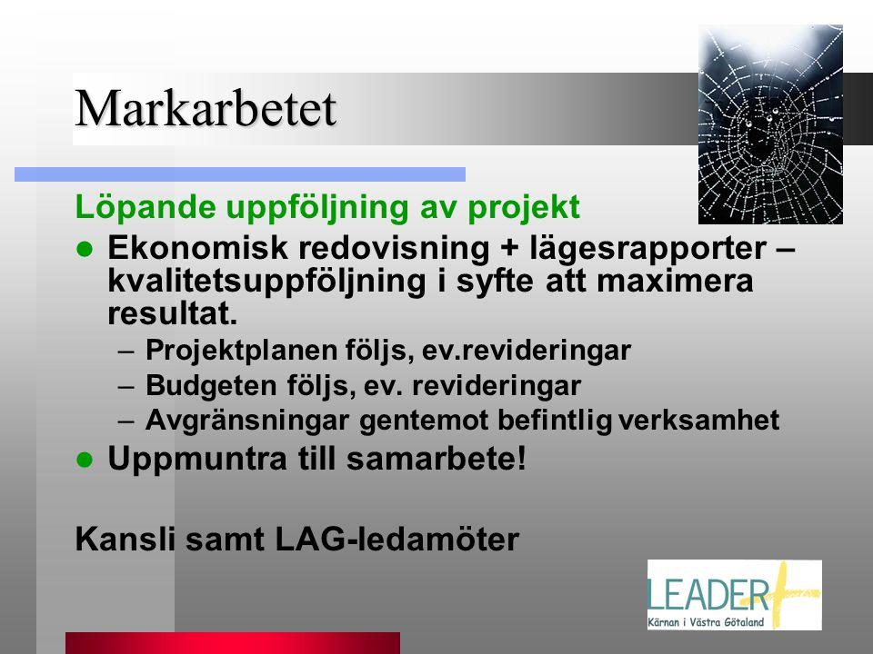 Markarbetet Löpande uppföljning av projekt  Ekonomisk redovisning + lägesrapporter – kvalitetsuppföljning i syfte att maximera resultat. –Projektplan