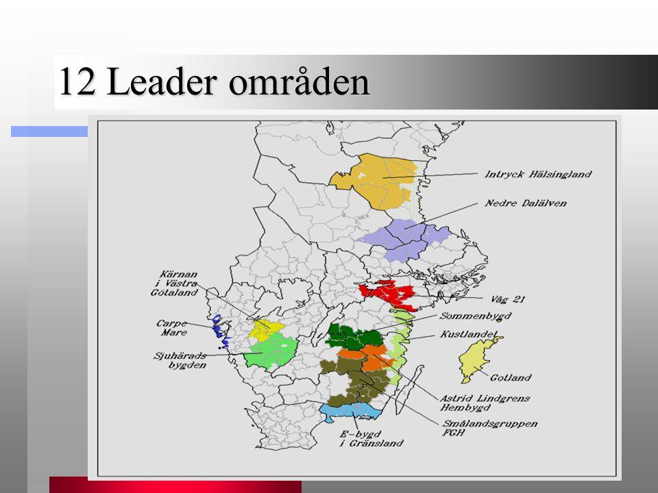 12 Leader områden