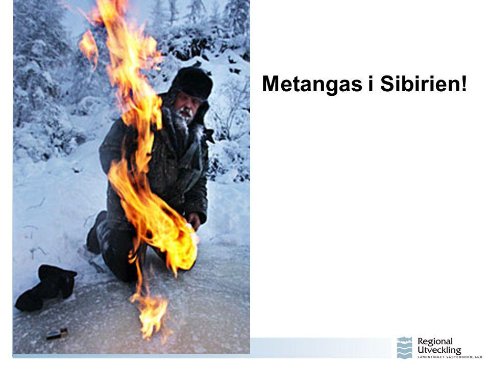 Metangas i Sibirien!