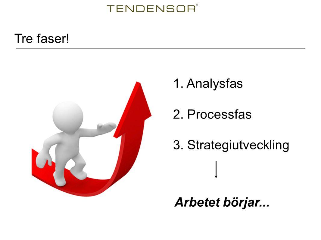 Tre faser! 1. Analysfas 2. Processfas 3. Strategiutveckling Arbetet börjar...