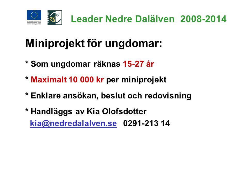 Leader Nedre Dalälven 2008-2014 Miniprojekt för ungdomar: * Som ungdomar räknas 15-27 år * Maximalt 10 000 kr per miniprojekt * Enklare ansökan, beslu