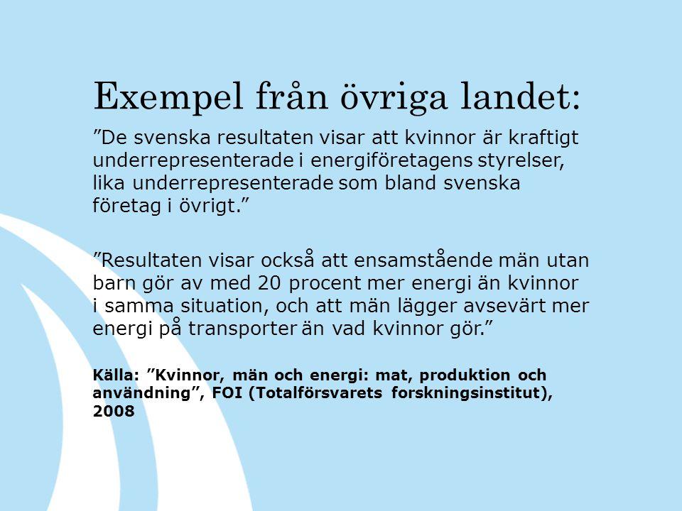 Exempel från övriga landet: De svenska resultaten visar att kvinnor är kraftigt underrepresenterade i energiföretagens styrelser, lika underrepresenterade som bland svenska företag i övrigt. Resultaten visar också att ensamstående män utan barn gör av med 20 procent mer energi än kvinnor i samma situation, och att män lägger avsevärt mer energi på transporter än vad kvinnor gör. Källa: Kvinnor, män och energi: mat, produktion och användning , FOI (Totalförsvarets forskningsinstitut), 2008