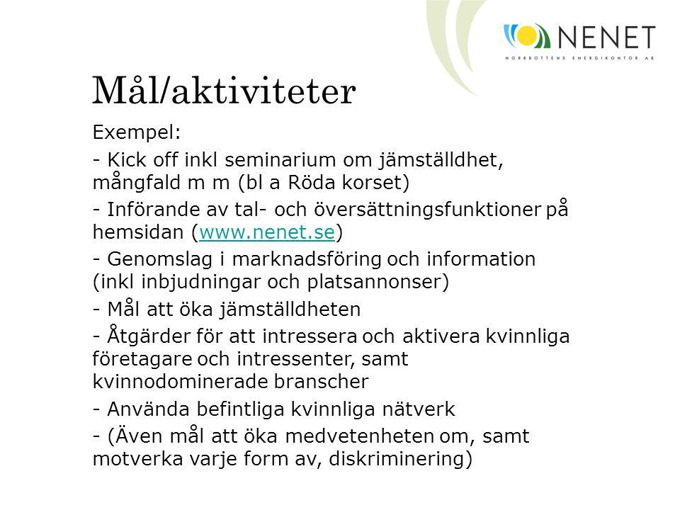 Mål/aktiviteter Exempel: - Kick off inkl seminarium om jämställdhet, mångfald m m (bl a Röda korset) - Införande av tal- och översättningsfunktioner på hemsidan (www.nenet.se)www.nenet.se - Genomslag i marknadsföring och information (inkl inbjudningar och platsannonser) - Mål att öka jämställdheten - Åtgärder för att intressera och aktivera kvinnliga företagare och intressenter, samt kvinnodominerade branscher - Använda befintliga kvinnliga nätverk - (Även mål att öka medvetenheten om, samt motverka varje form av, diskriminering)