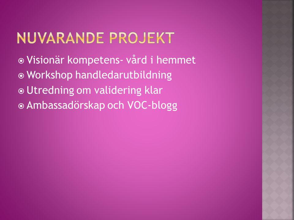 Visionär kompetens- vård i hemmet  Workshop handledarutbildning  Utredning om validering klar  Ambassadörskap och VOC-blogg