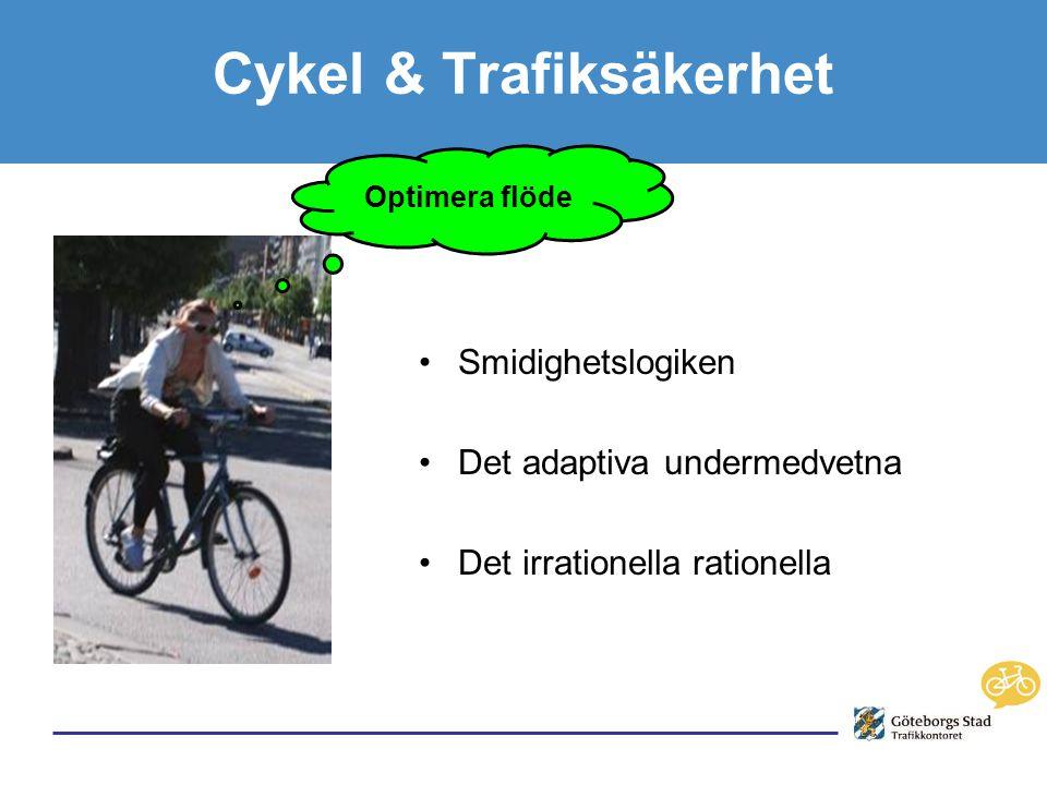 Cykel & Trafiksäkerhet •Smidighetslogiken •Det adaptiva undermedvetna •Det irrationella rationella Optimera flöde