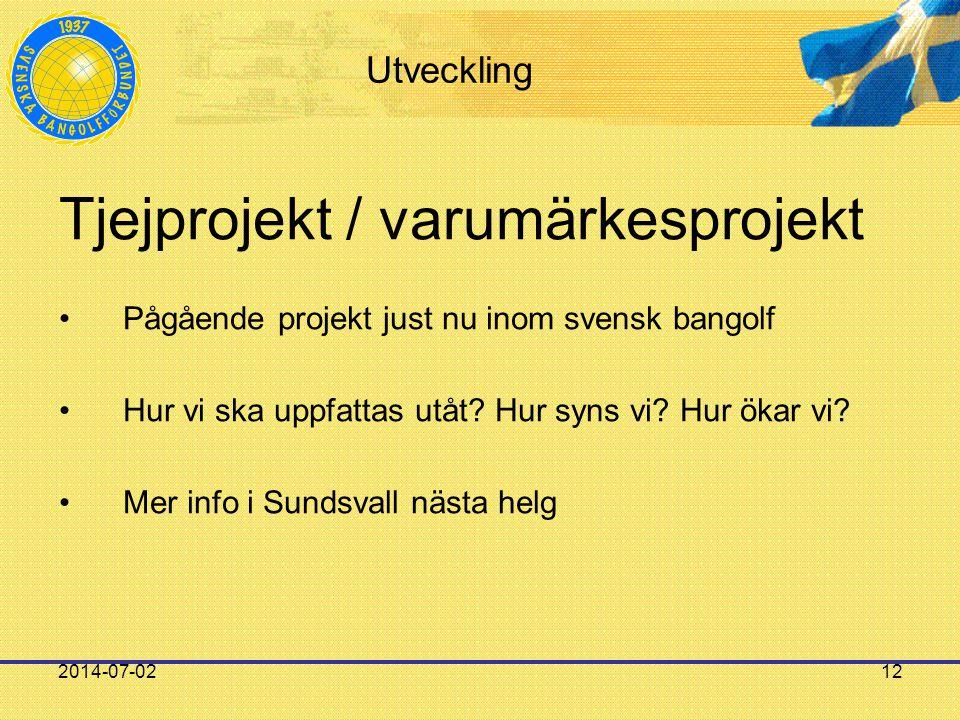2014-07-0212 Utveckling Tjejprojekt / varumärkesprojekt •Pågående projekt just nu inom svensk bangolf •Hur vi ska uppfattas utåt? Hur syns vi? Hur öka