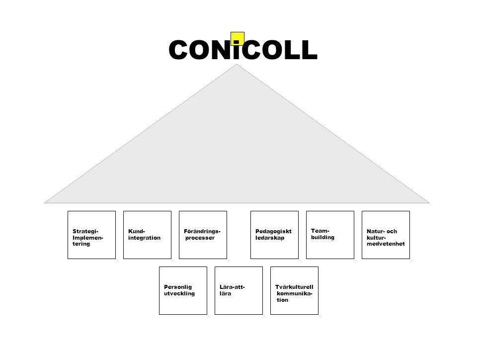 Strategi- Implemen- tering Kund- integration Förändrings- processer Personlig utveckling Lära-att- lära Natur- och kultur- medvetenhet Pedagogiskt ledarskap Team- building CONiCOLL Tvärkulturell kommunika- tion