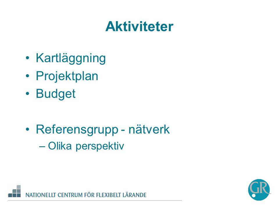 Aktiviteter •Kartläggning •Projektplan •Budget •Referensgrupp - nätverk –Olika perspektiv
