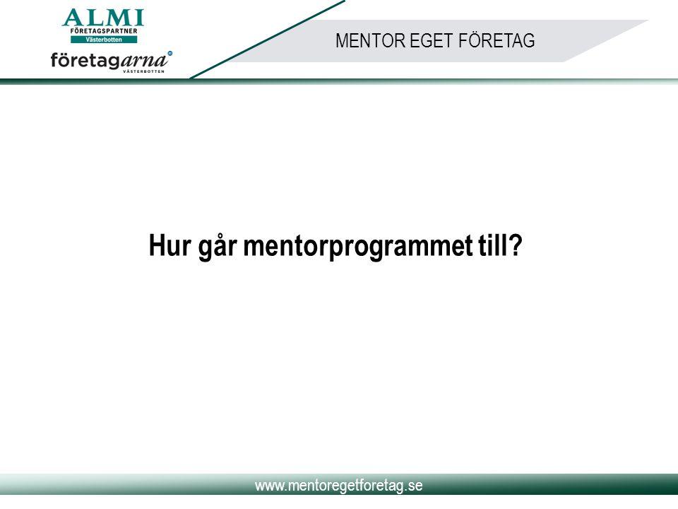 www.mentoregetforetag.se MENTOR EGET FÖRETAG Hur går mentorprogrammet till?