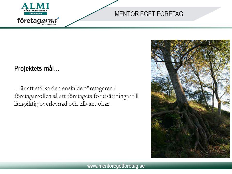 www.mentoregetforetag.se MENTOR EGET FÖRETAG Projektets mål… …är att stärka den enskilde företagaren i företagarrollen så att företagets förutsättning