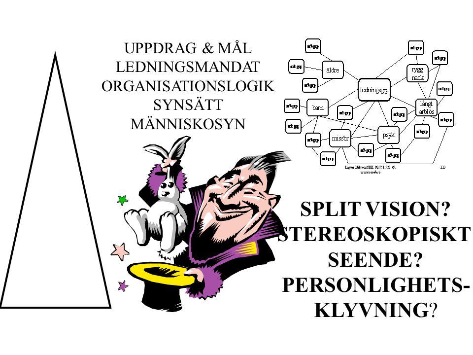UPPDRAG & MÅL LEDNINGSMANDAT ORGANISATIONSLOGIK SYNSÄTT MÄNNISKOSYN SPLIT VISION.
