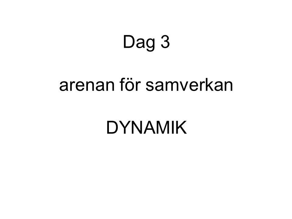 Dag 3 arenan för samverkan DYNAMIK