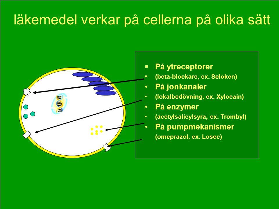 läkemedel verkar på cellerna på olika sätt  På ytreceptorer  (beta-blockare, ex. Seloken) •På jonkanaler •(lokalbedövning, ex. Xylocain) •På enzymer
