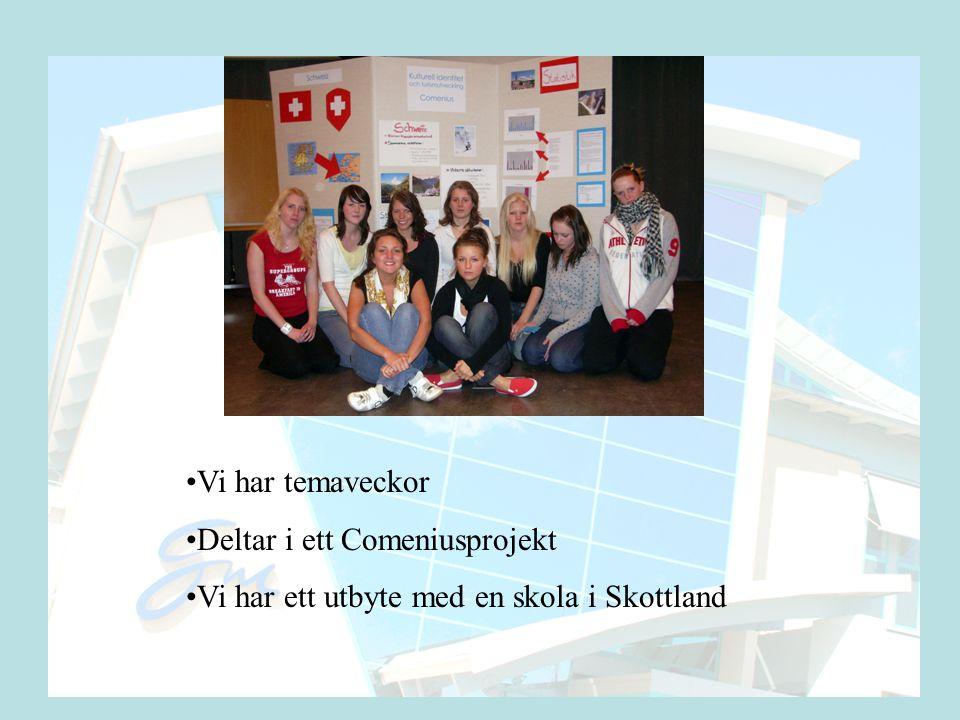 •Vi har temaveckor •Deltar i ett Comeniusprojekt •Vi har ett utbyte med en skola i Skottland