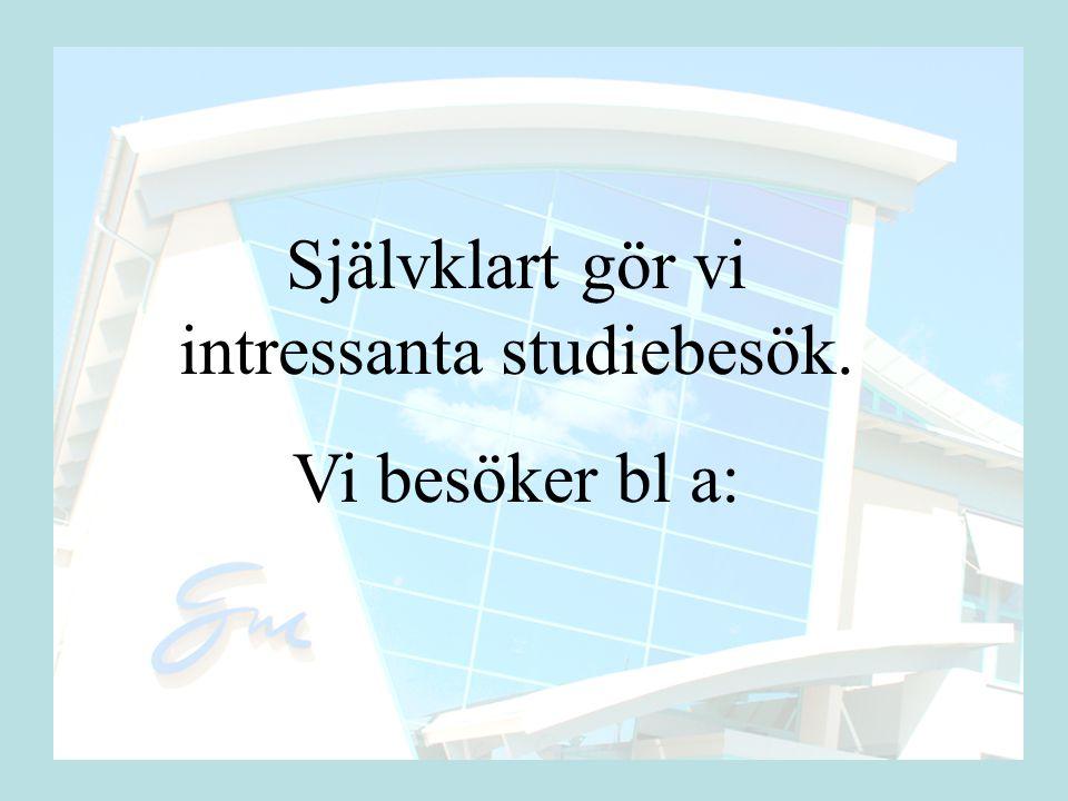 Arlanda Sälen Vingresor Globen