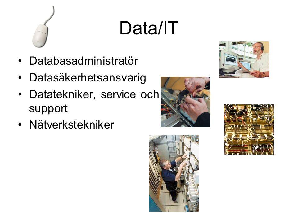 Data/IT •Databasadministratör •Datasäkerhetsansvarig •Datatekniker, service och support •Nätverkstekniker