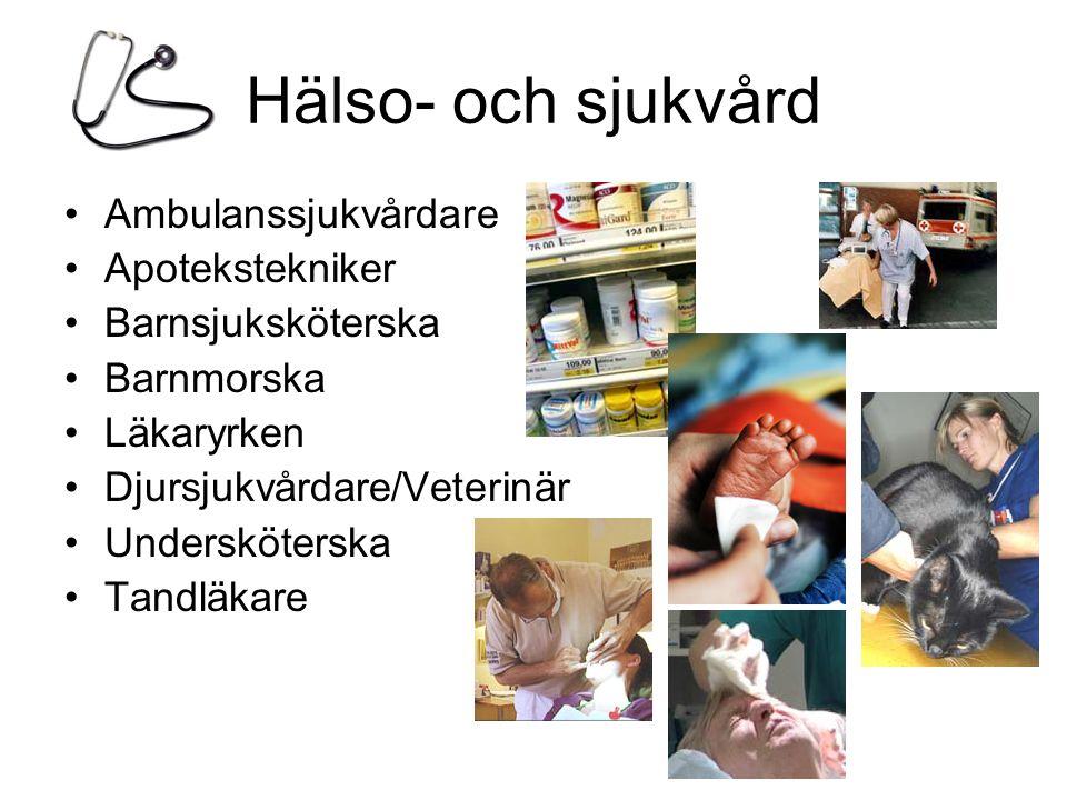 Hälso- och sjukvård •Ambulanssjukvårdare •Apotekstekniker •Barnsjuksköterska •Barnmorska •Läkaryrken •Djursjukvårdare/Veterinär •Undersköterska •Tandläkare