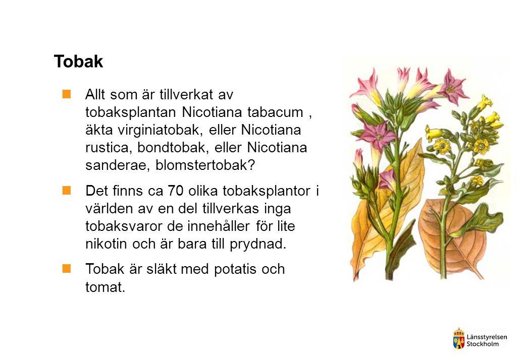 Allt som är tillverkat av tobaksplantan Nicotiana tabacum, äkta virginiatobak, eller Nicotiana rustica, bondtobak, eller Nicotiana sanderae, blomste