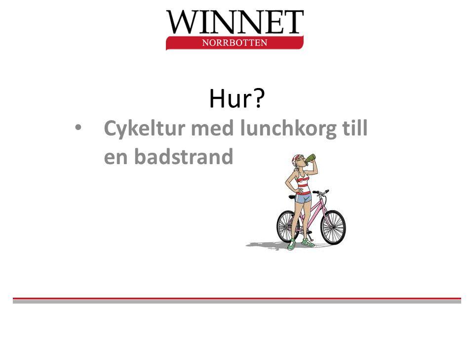 Hur? • Cykeltur med lunchkorg till en badstrand
