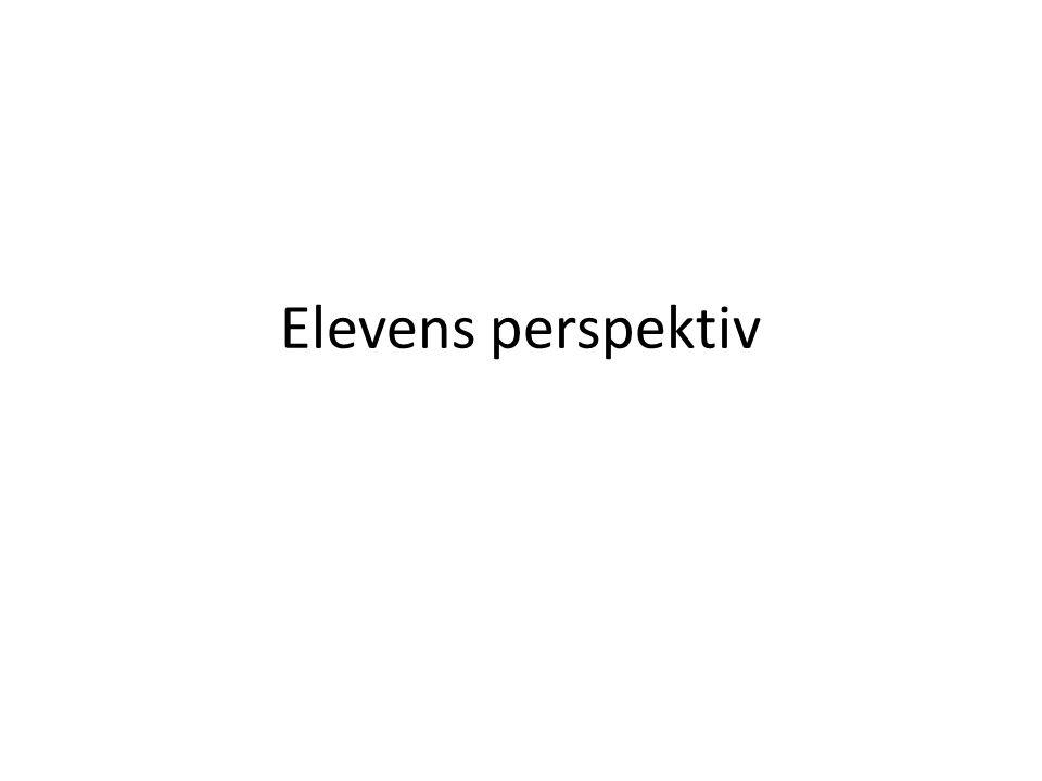 Elevens perspektiv