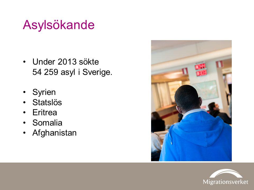 Asylsökande •Under 2013 sökte 54 259 asyl i Sverige. •Syrien •Statslös •Eritrea •Somalia •Afghanistan