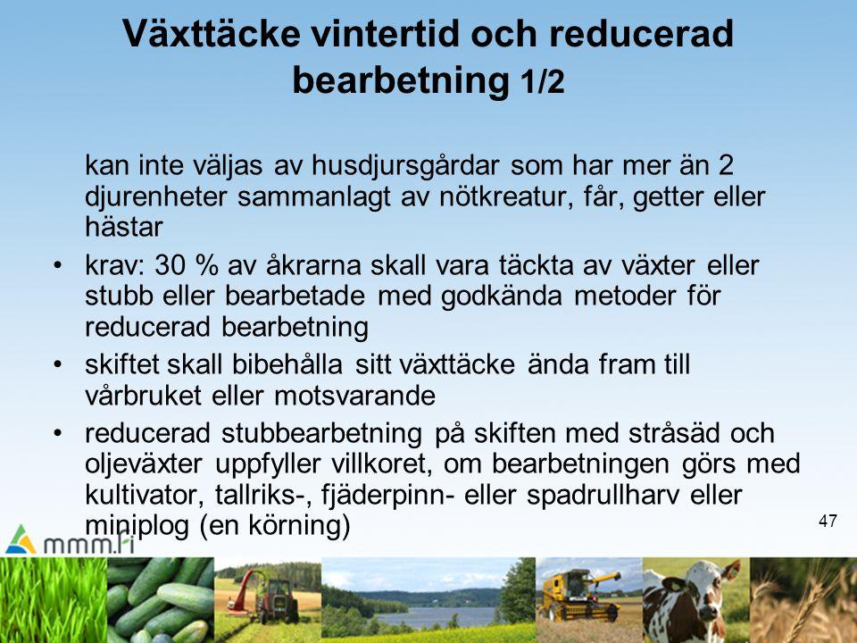 47 Växttäcke vintertid och reducerad bearbetning 1/2 kan inte väljas av husdjursgårdar som har mer än 2 djurenheter sammanlagt av nötkreatur, får, get
