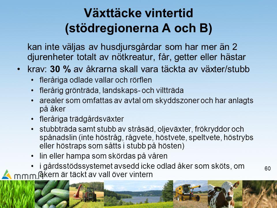 60 Växttäcke vintertid (stödregionerna A och B) kan inte väljas av husdjursgårdar som har mer än 2 djurenheter totalt av nötkreatur, får, getter eller