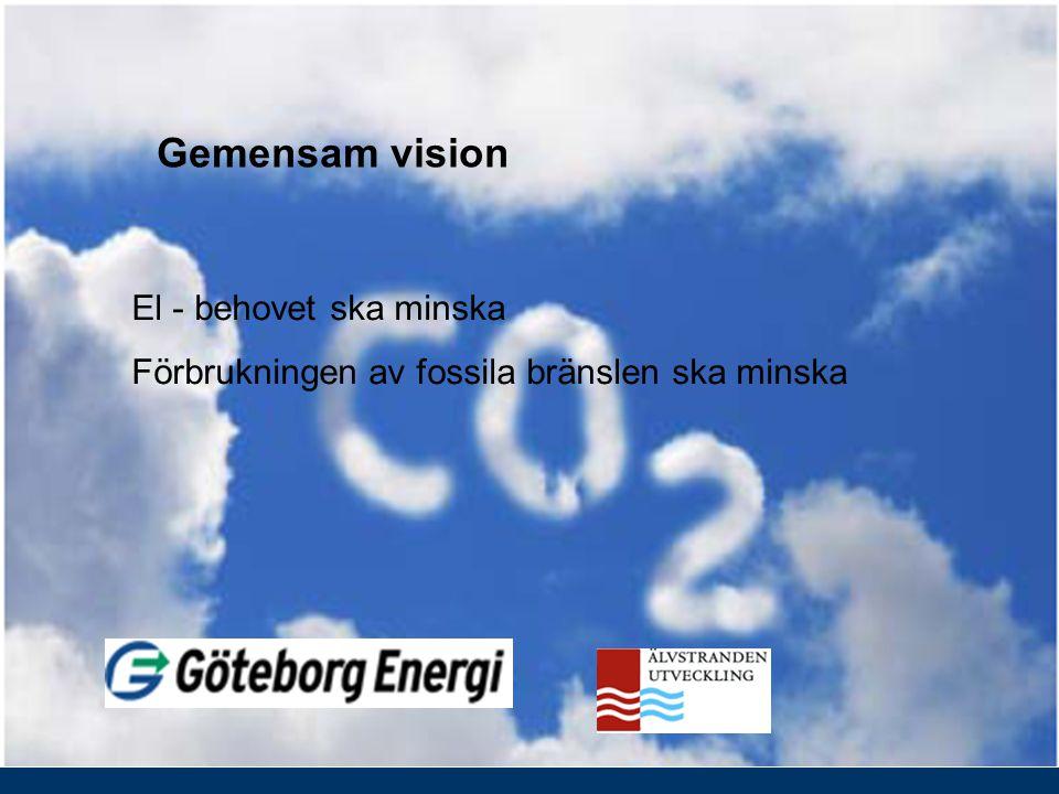 El - behovet ska minska Förbrukningen av fossila bränslen ska minska Gemensam vision