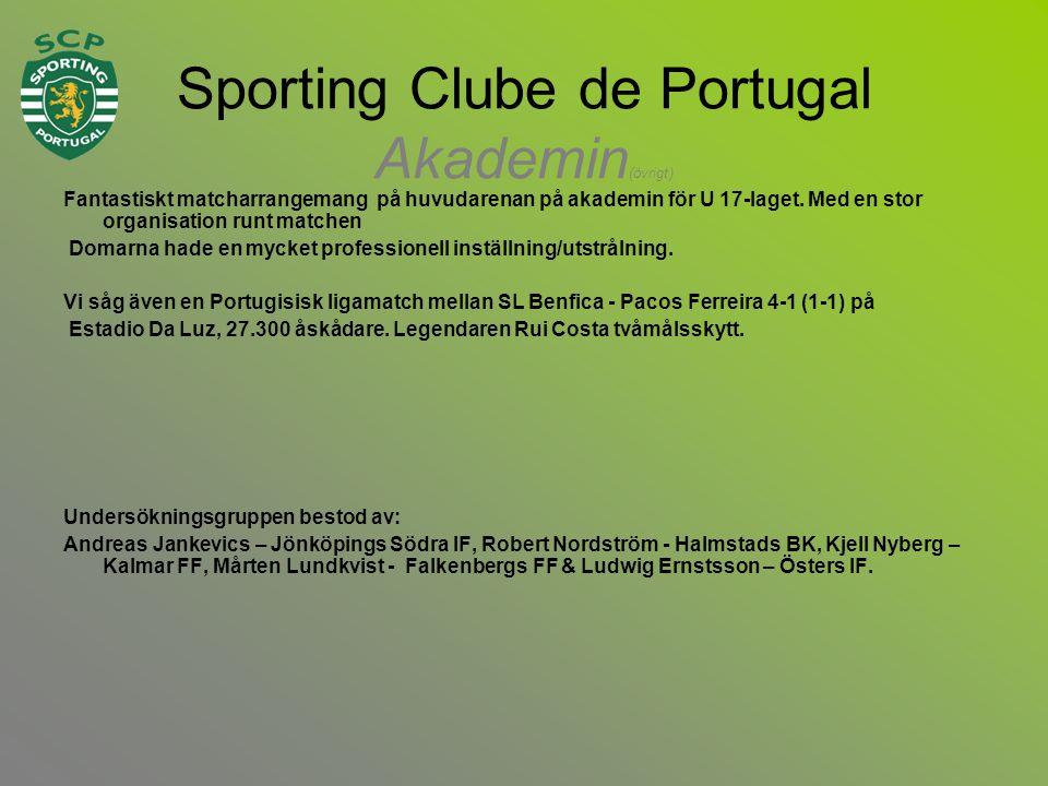 Sporting Clube de Portugal Akademin (övrigt) Fantastiskt matcharrangemang på huvudarenan på akademin för U 17-laget.