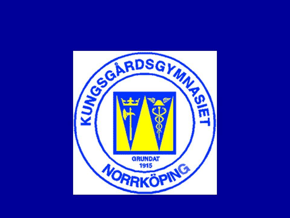 Projektets genomförande •Under andra arbetsveckan, i Danmark, skulle alla grupper genomföra en marknadsföringskampanj.