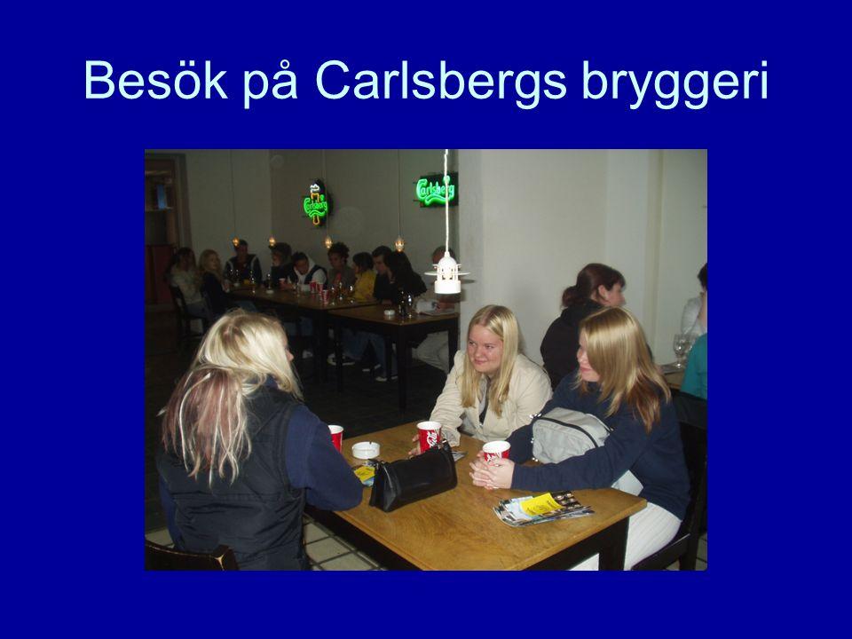 Danmarksutbytet •Eleverna arbetar i blandade svensk- danska grupper om 4 – 6 elever och arbetsspråket är respektive modersmål.