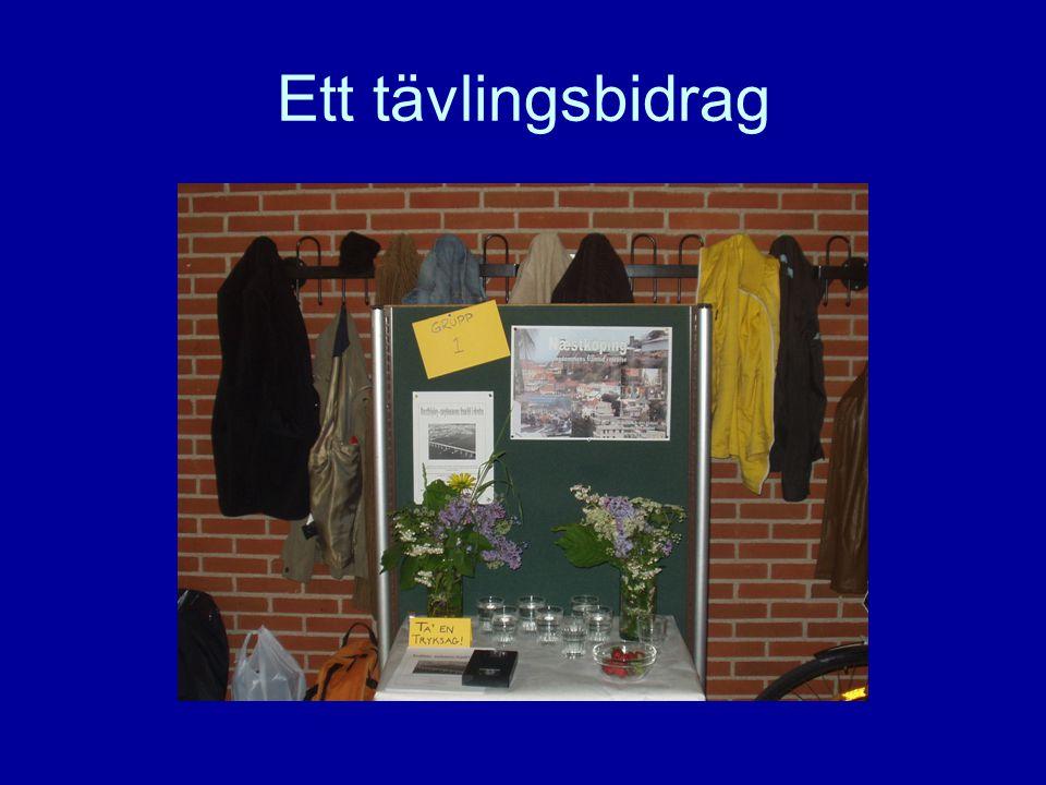 Projektets genomförande •Lärarna agerar kommunstyrelse och utlyser en tävling i den fiktiva kommunen för att hitta sätt att motverka utflyttningen.