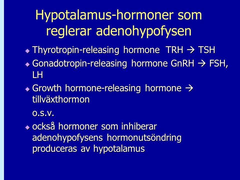 Hypotalamus-hormoner som reglerar adenohypofysen  Thyrotropin-releasing hormone TRH  TSH  Gonadotropin-releasing hormone GnRH  FSH, LH  Growth ho