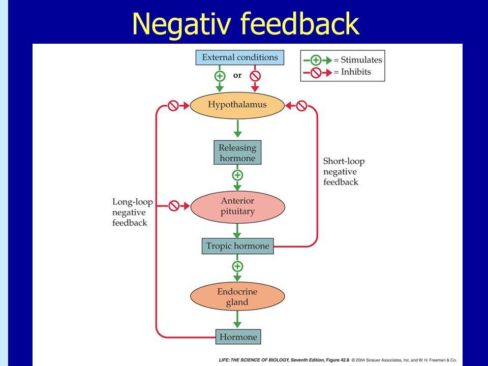Negativ feedback