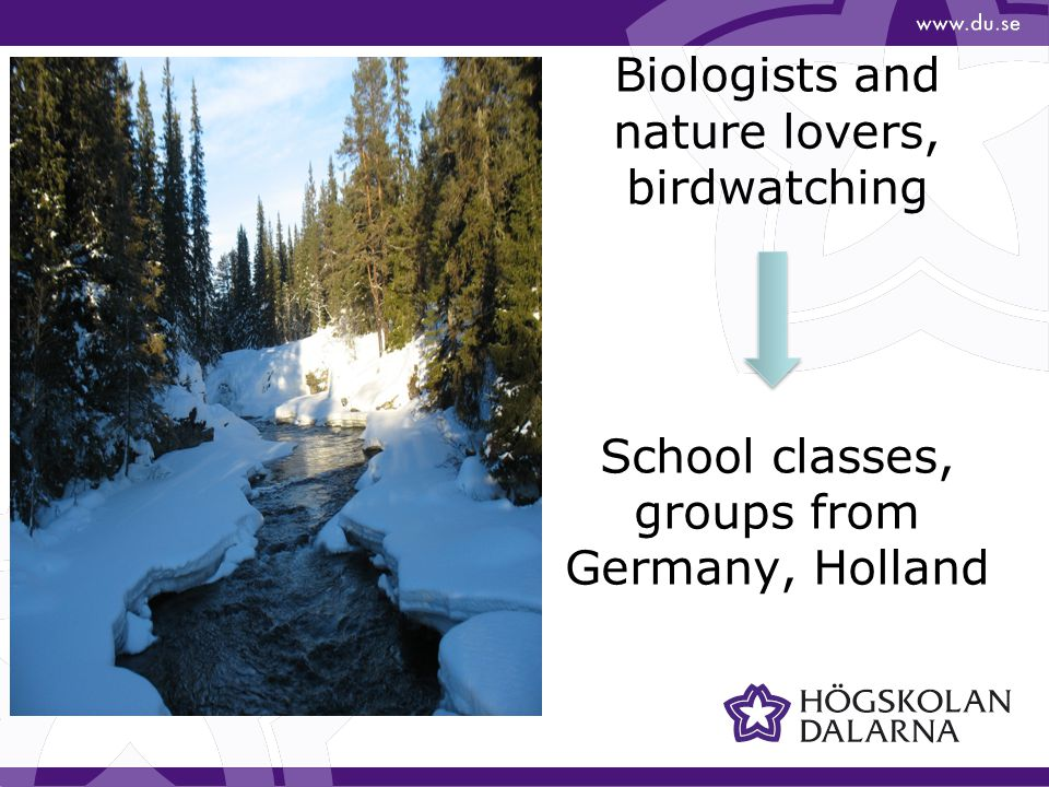 Biologists and nature lovers, birdwatching School classes, groups from Germany, Holland