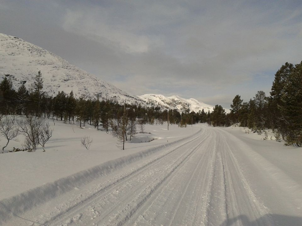 SITE Destination Study Trip 2014 Feedback By Ingmar Mehrtens, Alexandra Vatetco