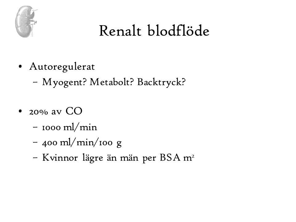 Renalt blodflöde •Autoregulerat –Myogent? Metabolt? Backtryck? •20% av CO –1000 ml/min –400 ml/min/100 g –Kvinnor lägre än män per BSA m 2