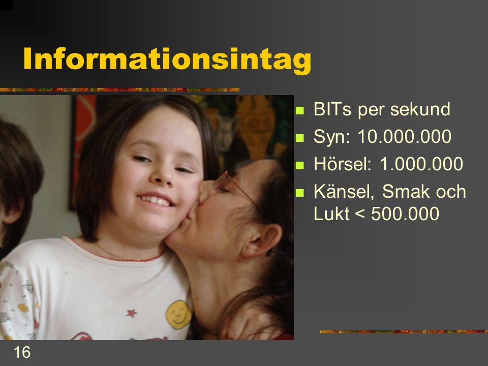 16 Informationsintag  BITs per sekund  Syn: 10.000.000  Hörsel: 1.000.000  Känsel, Smak och Lukt < 500.000